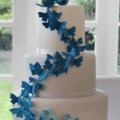 butterfly ombre cake