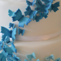 butterfly ombre cakeclose up 2