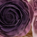 purple rose ranunculus pleated wedding cake close up 1